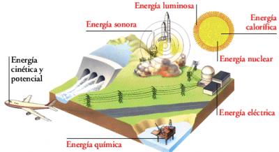 PARA PREPARAR EL EXAMEN DEL TEMA 2 DE C. NATURALES: 2º E.S.O.